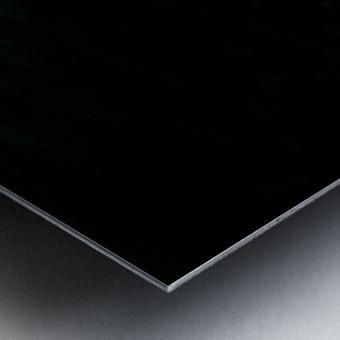 E12098B3 ADD9 4FD9 B454 26D13142AC6C Metal print