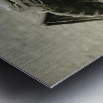 First Love 3 in Sepia Metal print