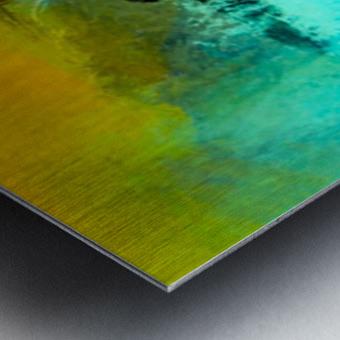 79D45EF2 D4C2 41E3 99F2 D103655F38D3 Metal print