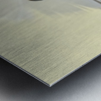 Feathers drop Metal print