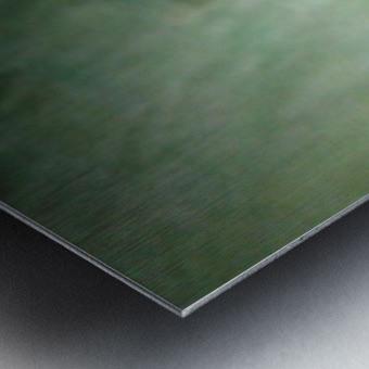 1548132159556 Metal print