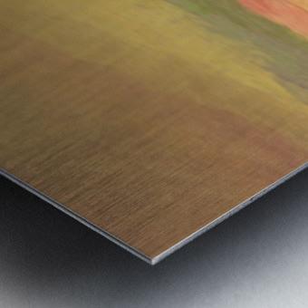 42BEF582 985D 4269 874B 17475ACA9A8E Metal print