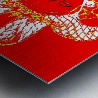 Goldie -  by Neil Gairn Adams  Metal print