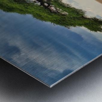 DSC02636 Metal print