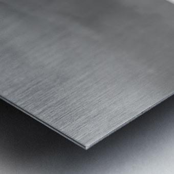 ROGUE WAVE Metal print