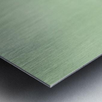 Umbra Metal print