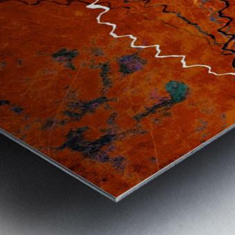 Ancient Paths Metal print