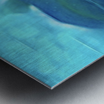 Flora of Paint Metal print