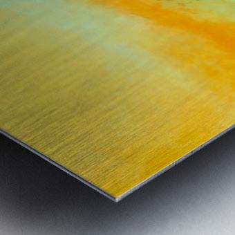 CB81070E 3498 4A4D BB09 499337C220E3 Metal print