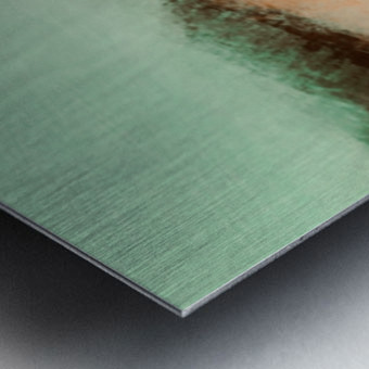 63AE22B5 21D3 4D50 AFD3 EF0602EC42E4 Metal print