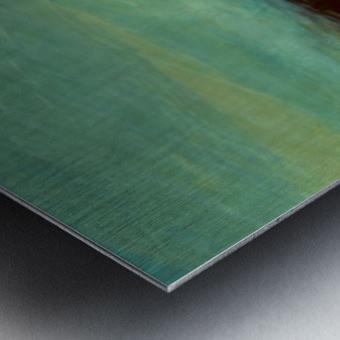 DC53C77E C518 4396 BA5A 0110D0119C49 Metal print