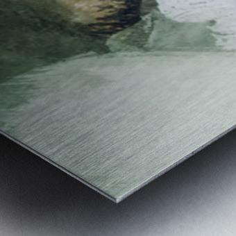 50242300 9F96 47D3 AEE9 7CA7C4D6B9C3 Metal print