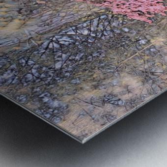 22E87D39 0480 45DB AB7D 1F5C4D7E44D6 Metal print