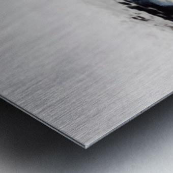 C8BE6463 7915 40FE 8B37 E87DC7C94FBC Metal print