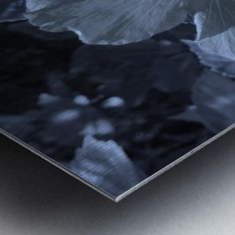 Screenshot_20190106 182135_Gallery Metal print