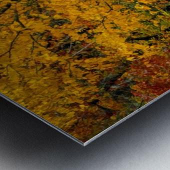 Yellow Tree Leaves Metal print