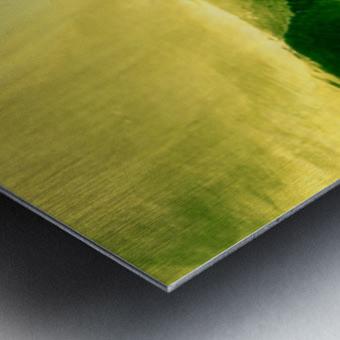 C4C2BC48 DFDA 4FB0 8B48 156F0F5FC70B Metal print