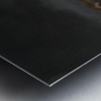 PNG image 4 Metal print