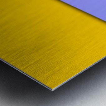 cool abstract (5) Metal print