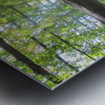 Landscape (60) Metal print