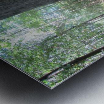 Landscape (166) Metal print