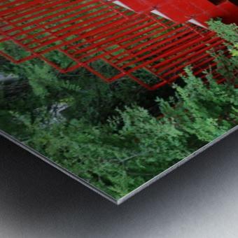Dow Gardens Red Footbridge 062618 Metal print