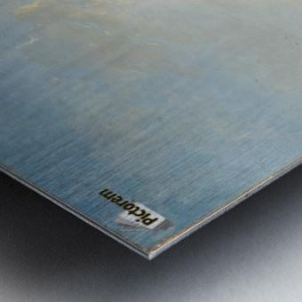 Syon Metal print
