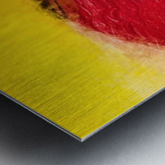 04A68722 2841 4C9D AB3C 202DB397986E Metal print