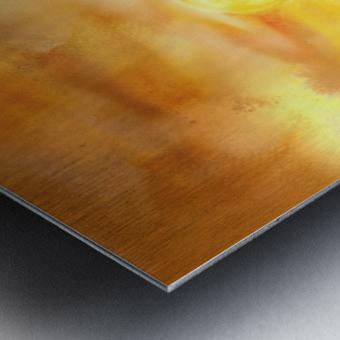 Abstract Warm Sunset I Metal print