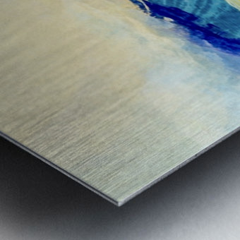 5D599942 60E7 4639 ACC7 F175F85E751D Metal print
