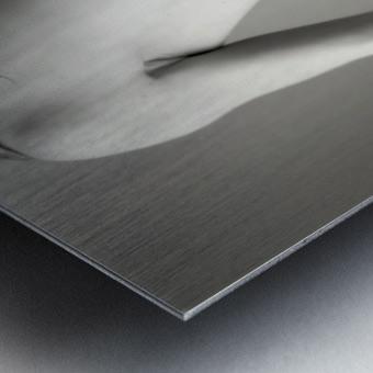 Nude 4 Metal print
