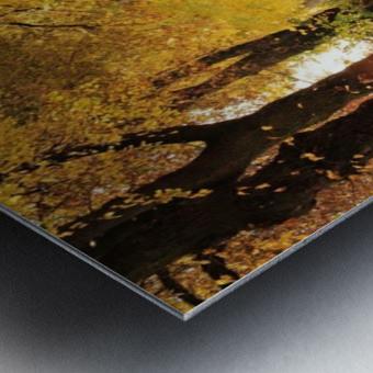 JPT 235721 Metal print