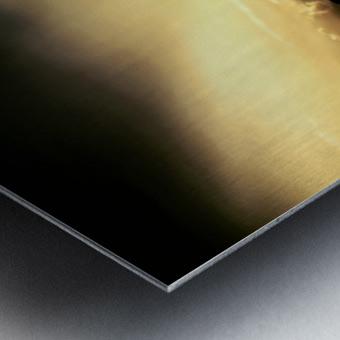 Ray of light Metal print