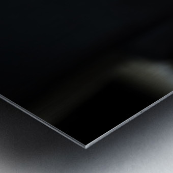 AZY_5255 Metal print
