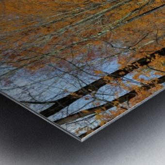 Autumn Three Maple Dr. Manchester VT Metal print