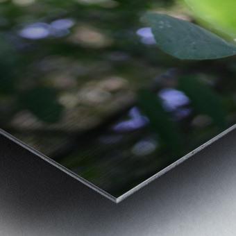 blur leaf Metal print