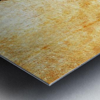 Murray Gum Tree Bark 3 Metal print