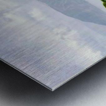 k4848~2 Metal print