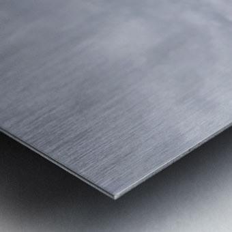 Enmeshed Metal print