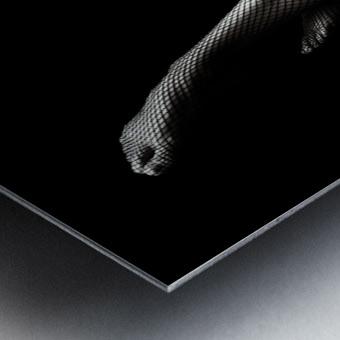 Legs in Fishnet Stockings 1 Metal print