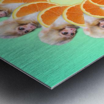 Orange you glad i didnt say Monkey 1080 Metal print