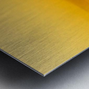 Aurora Westward 1 Metal print