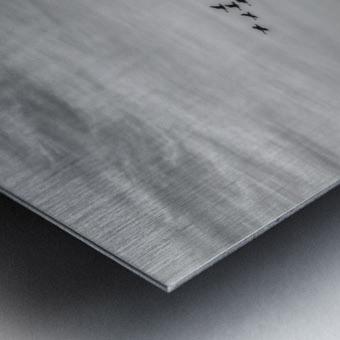 The Journey  Metal print