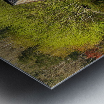 Looking Through the Web Metal print