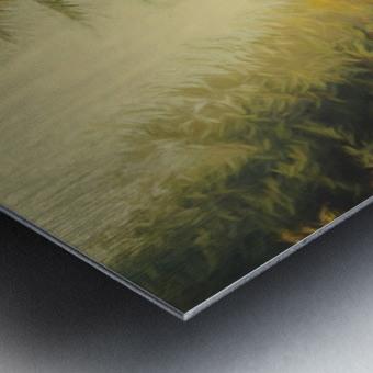 Autumnal Landscape 4 Metal print