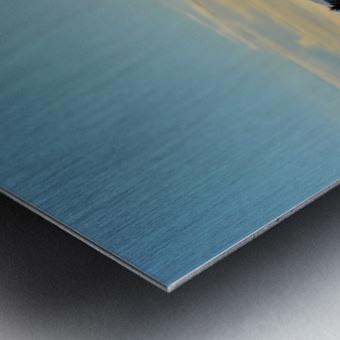 Bloomin Metal print
