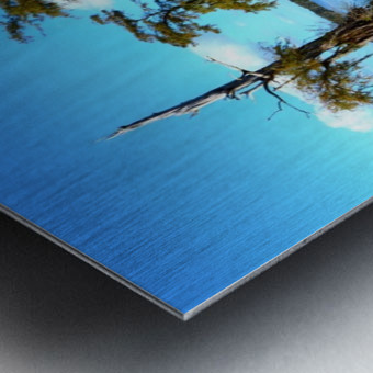 Reflect Much Metal print