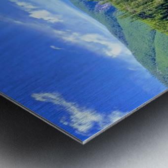 Majestic Waters Metal print