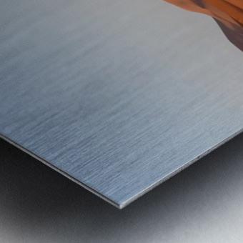 Merzouga sunrise Metal print