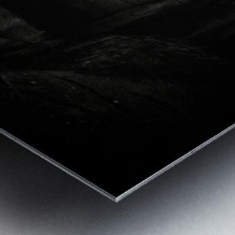 Rhino in Black & White Metal print